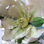 Magnolias - ChikiCakes