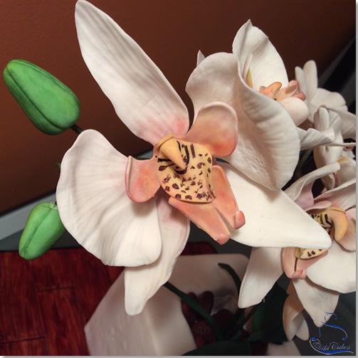 Tarta Maceta de Orquídeas